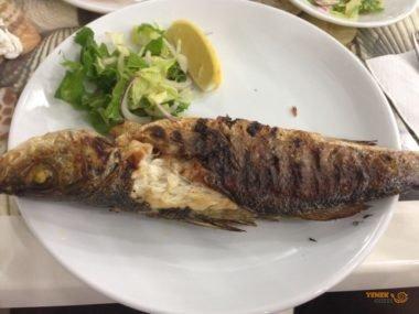 Balıkzade
